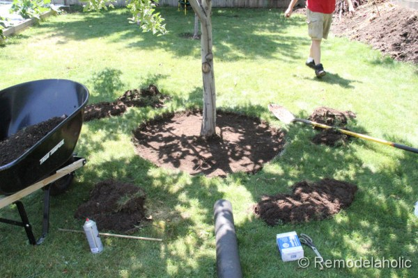Mulch Weed Control Around Trees-5
