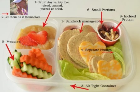 school lunch tip - sending healthy food for lunch, Super Healthy Kids