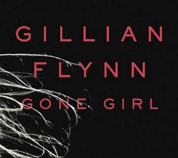 If You Loved Gone Girl Book Suggestions via Tipsaholic.com
