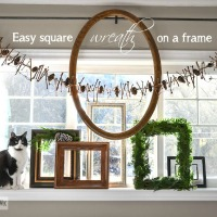 evergreen-frame-04902