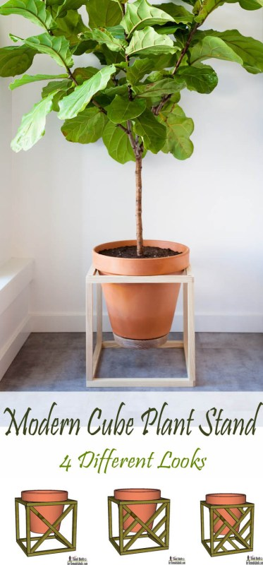 modern cube plant stand-4 different looks