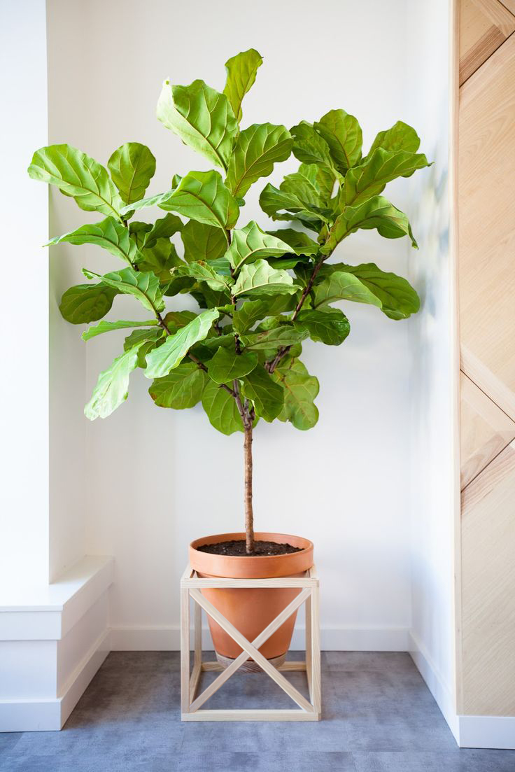 Remodelaholic | Modern Cube Plant Stand With Optional Fretwork on Hanging Plants Stand Design  id=34697