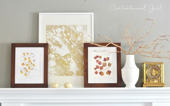 Decorating with Natural History Images for Fall
