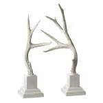 Winter Whites Antlers