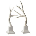 Winter Whites Antlers