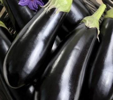 10 Eggplant Recipes Everyone Will Love