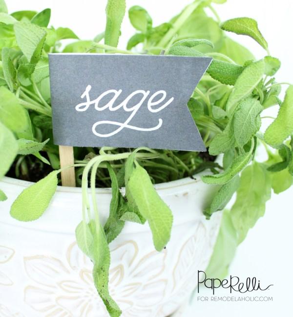 Sage Herb Labels @Remodelaholic