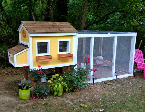 from Backyard Chickens - love the window boxes!