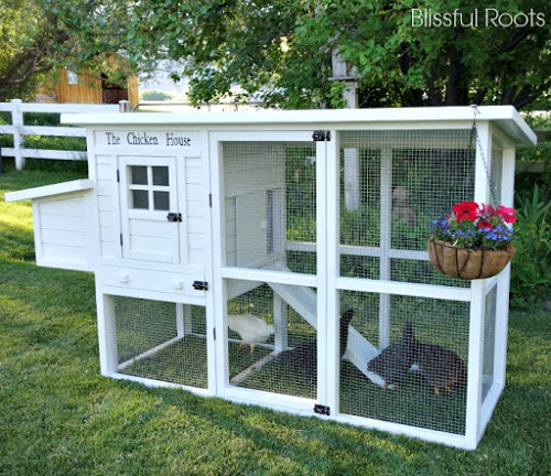 Cute chicken coop plans - photo#34