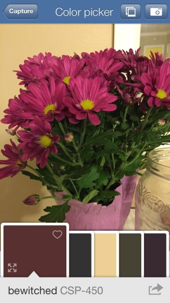 Benjamin Moore Color Capture - Free iPhone App to Choose Paint Colors from a Photo @Remodelaholic