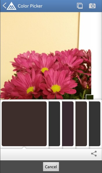 Benjamin Moore Color Picker - Free Android DIY App to Select a Paint Color from a Photo @Remodelaholic