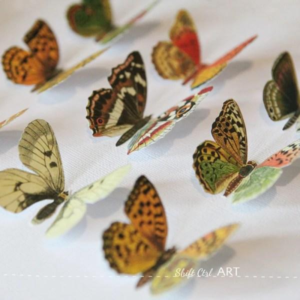 vegan butterfly art via shift ctrl art