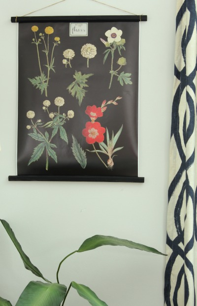 free botanical printable and how to hang it (At Home on the Bay)