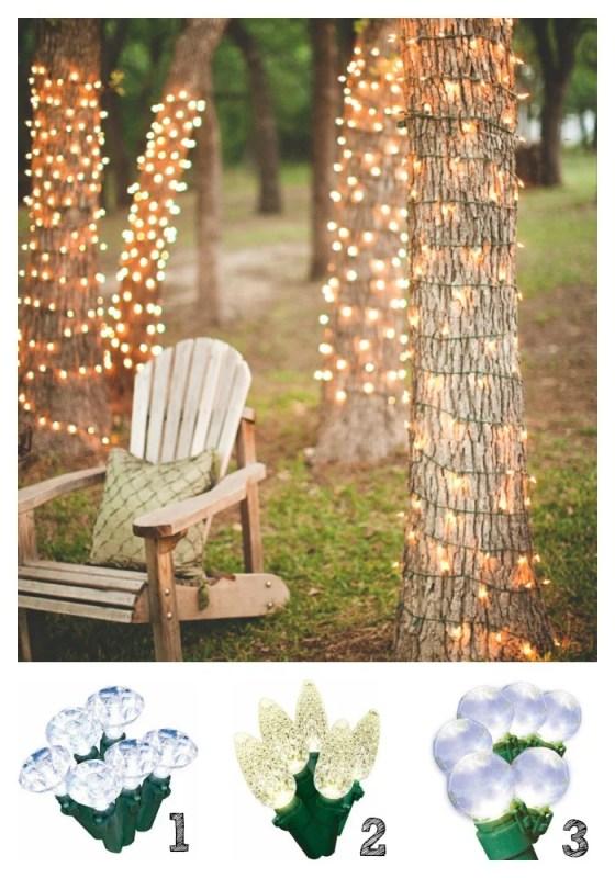 Backyard Lights 1