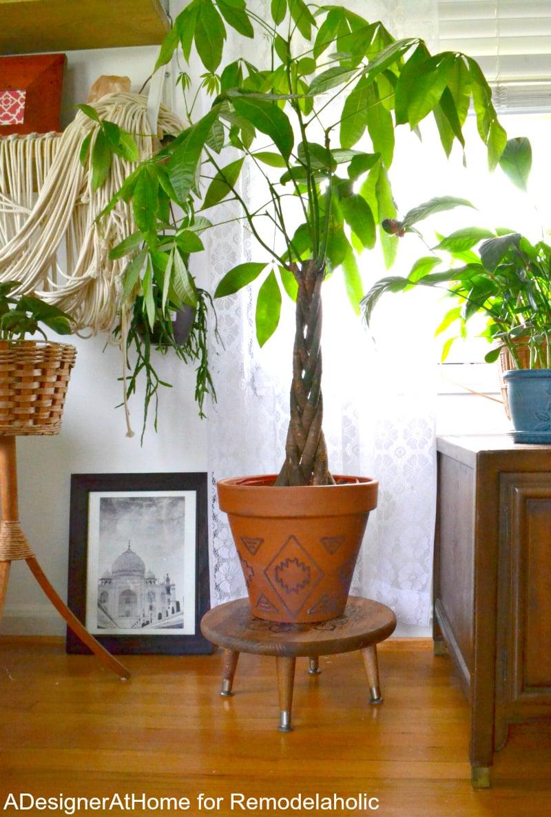 money-tree-plant-raised-planter-stand-stool-handmade-tutorial