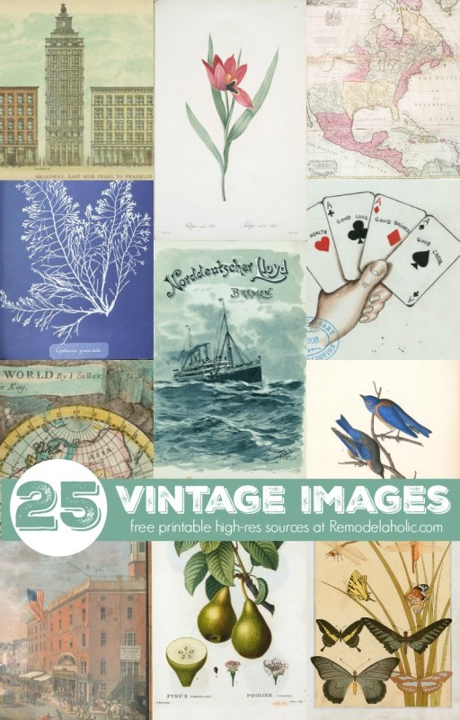 Free-printable-high-resolution-vintage-images-from-book-pages-and-more-via-NYPL-sources-at-@Remodelaholic
