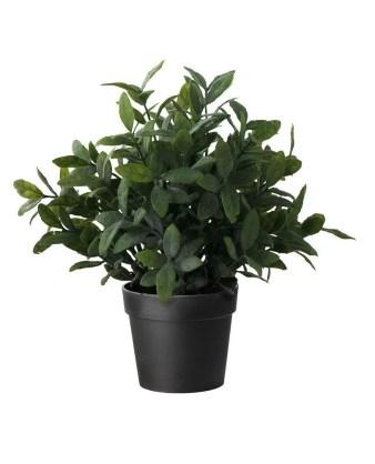faux sage plant