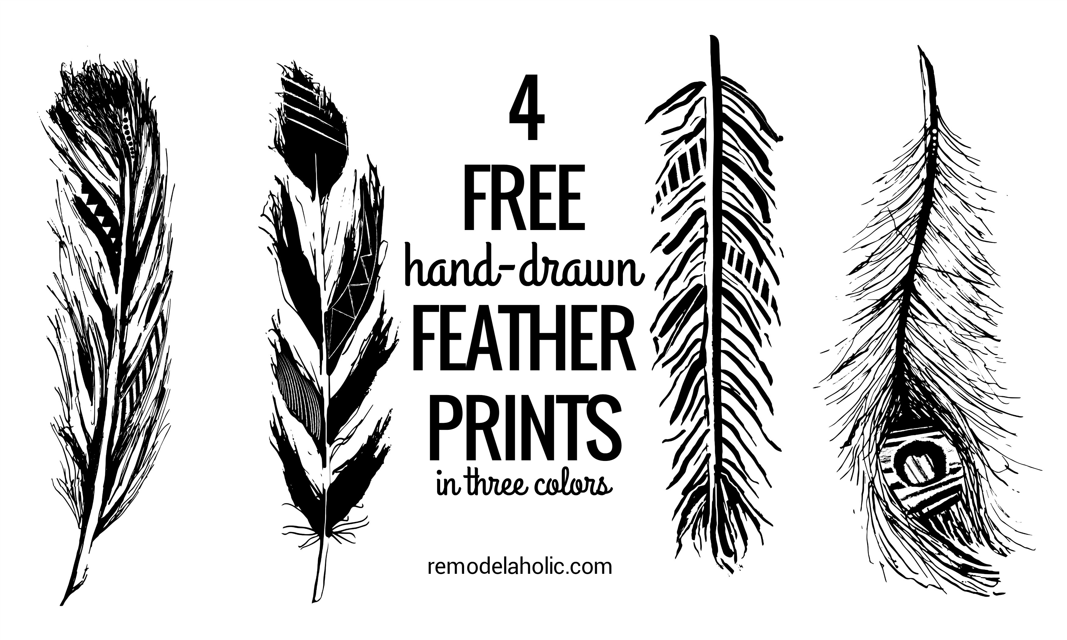 photo regarding Printable Feathers called Remodelaholic Feather Printables