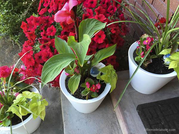 Nimbus Pot Self Watering pots @remodelaholic-7