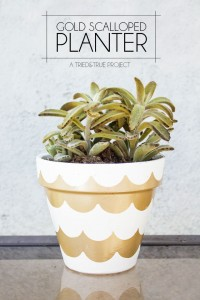 DIY Gold Scalloped plant pot by Tried and True via @Remodelaholic