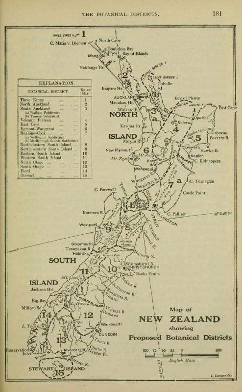 Vintage Maps 4