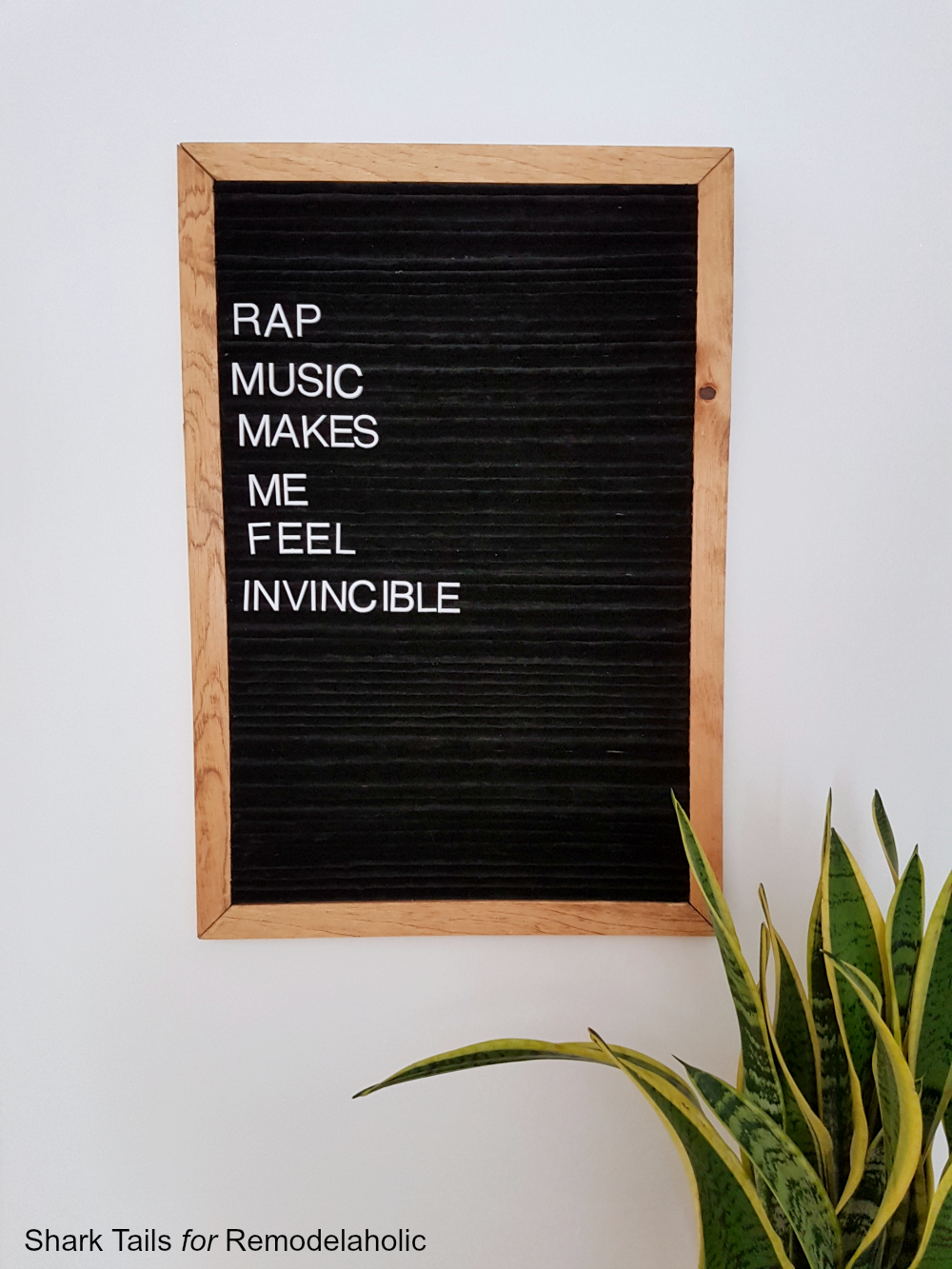 Letter Board by Shark Tails