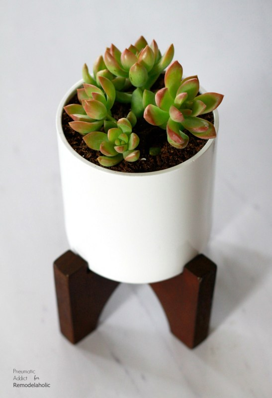 How To Build West Elm Wood Flower Pot Knockoff | Elevate your house plants with these modern wood tabletop planters that you can make in a few hours! Get the full tutorial and building template from Pneumatic Addict on Remodelaholic.com