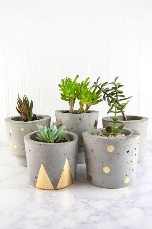 DIY Plant Pots DIY In PDX