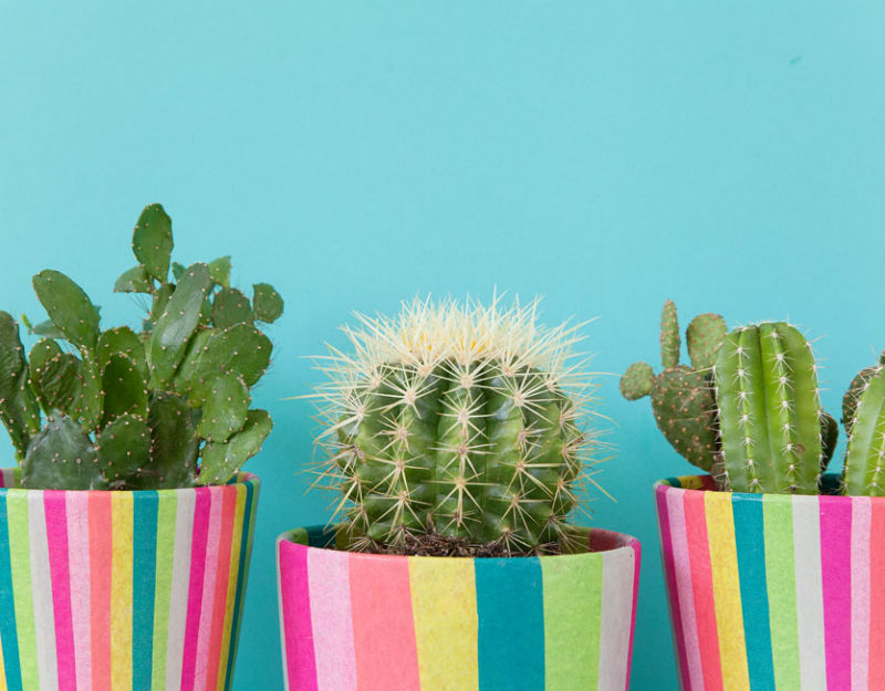 Remodelaholic 20 Amazing Diy Plant Pots