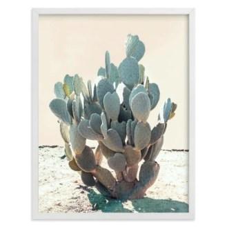 Southwestern Midcentury Cactus Art