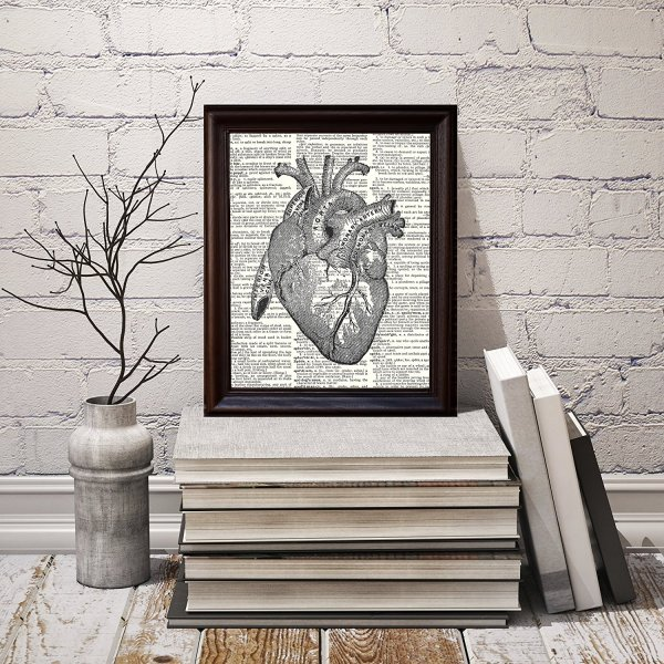 Non Traditional Valentine's Day Art Print, Anatomical Heart
