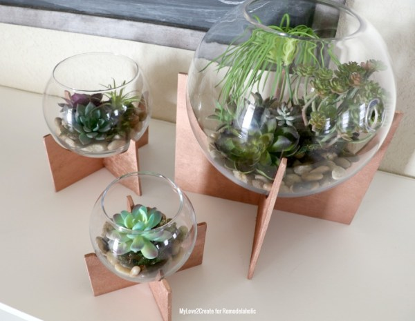 Terrariums With Plywood Base, MyLove2Create