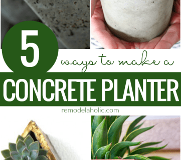 How to Make an Easy DIY Concrete Planter