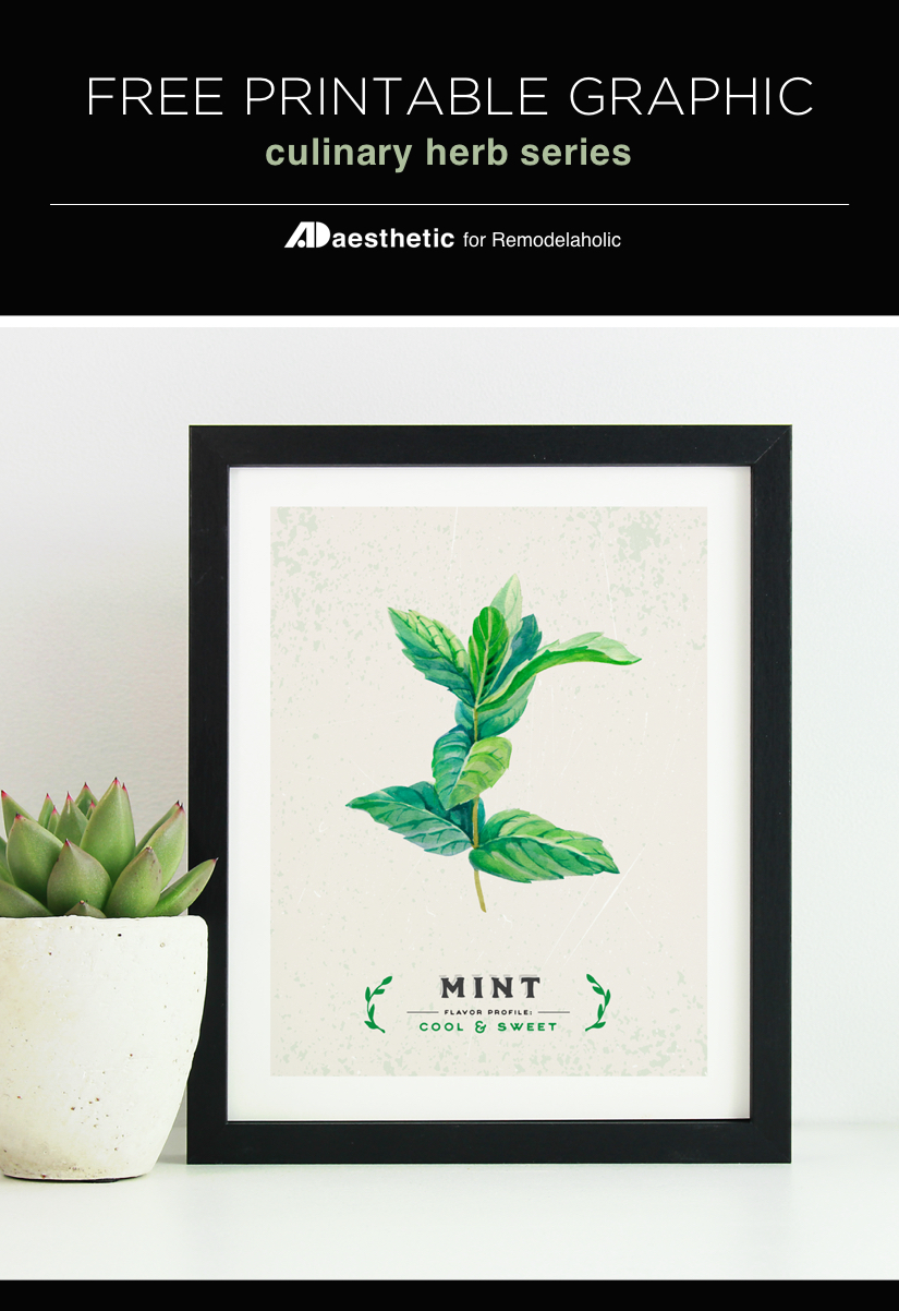 Free Printable Graphic • Culinary Herbs AD Aesthetic For Remodelaholic • Vertical