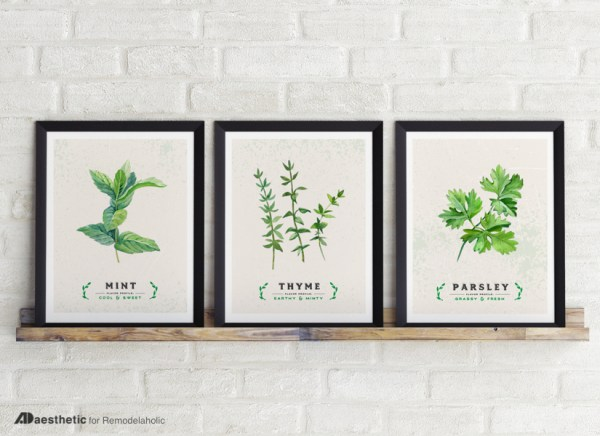 Printable Kitchen Herb Art Prints, Mint Rosemary Thyme, AD Aesthetic For Remodelaholic