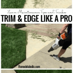 Trim And Edge Your Lawn Like A Pro With Stihl