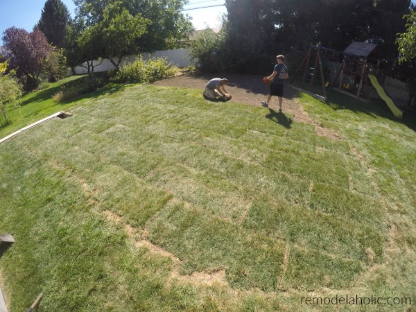 Tips For Laying Your Own Sod #remodelaholic