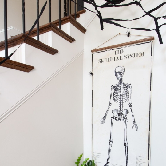 Wall Hanging Of A Human Skeleton System Against White Walls With White And Wood Stairs In The Background