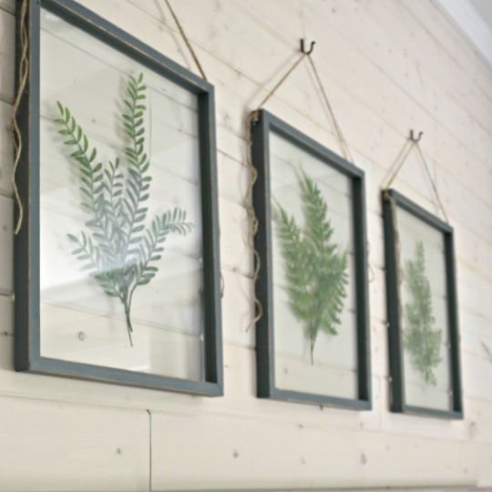 Planked Wall With Pressed Leaves In Glass With Black Frame
