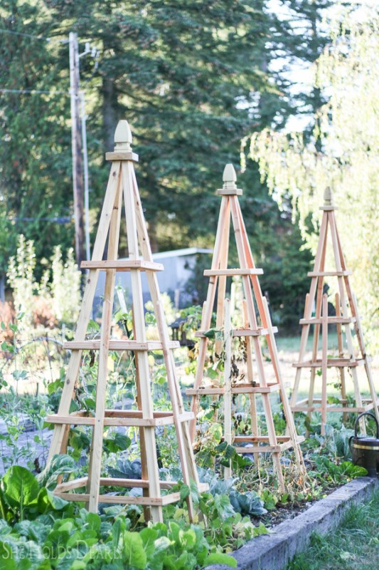 DIY Vegetable Garden Ideas French Tuteurs Garden Trellis, She Holds Dearly