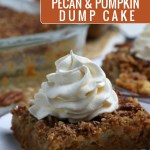 Pecan And Pumpkin Dump Cake, Pumpkin Spice Cake With Pecan Topping, Remodelaholic