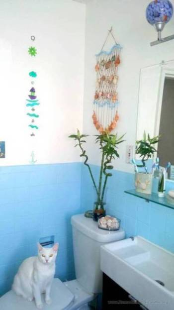 Bathroom Renovation Calculator: Small Bathroom Remodel For $750 Or Less
