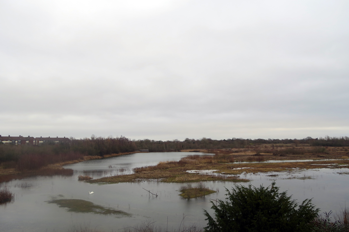 Overlooking the drained and decommissioned Kempton Park East Reservoir