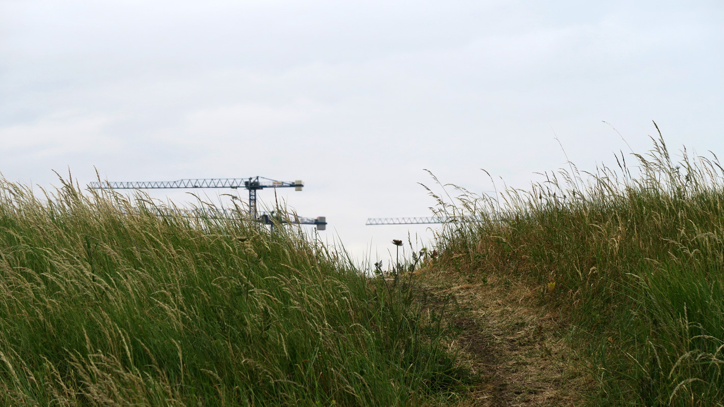 Mounds of landfill look like dunes, with long grass growing on them. Tall cranes in the distance.