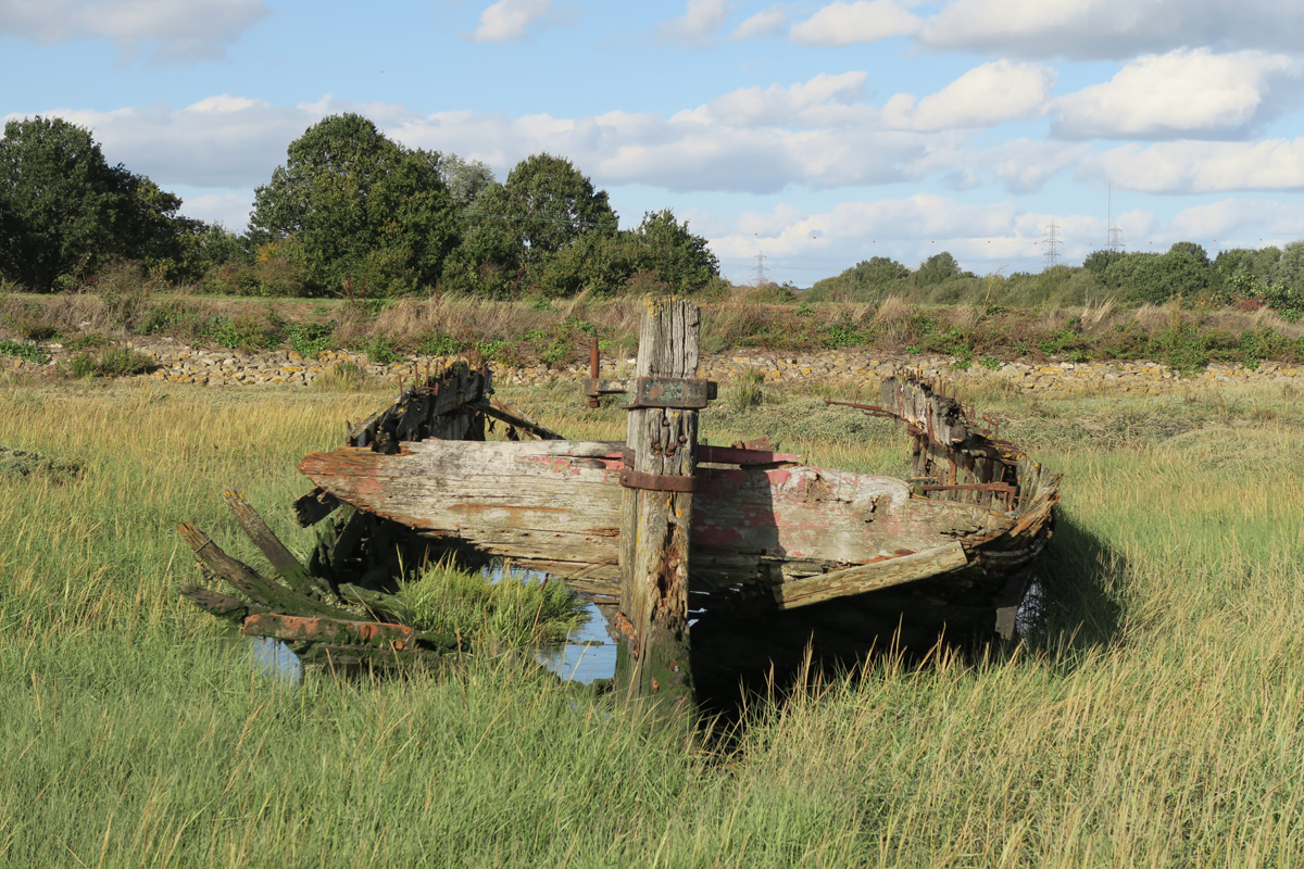 A decaying wooden barge, viewed from the broken stern, surrounded by saltmarsh. Beyond it, the river wall and path.