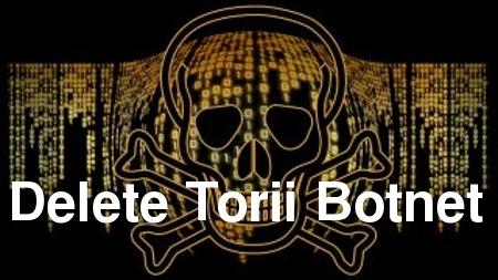 Elimina Torii Botnet