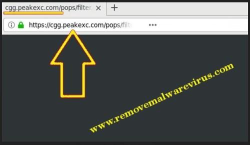 Elimina Cgg.peakexc.com