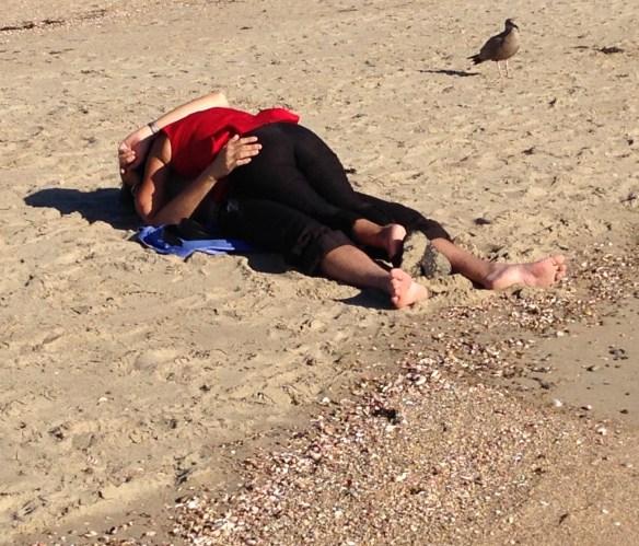 Hammonassett Beach, 9-12-2014