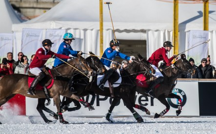 Sankt Moritz Snow Polo 2015 - Nikon D810, 400mm (85-400mm ƒ4.5-5.6) 1/1250 ƒ/5.6 ISO 200