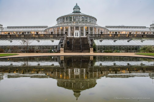 Copenaghen, Orto Botanico - Nikon D810, 24mm (24-70.0 ƒ/2.8) 1/50sec ƒ/8 ISO 400